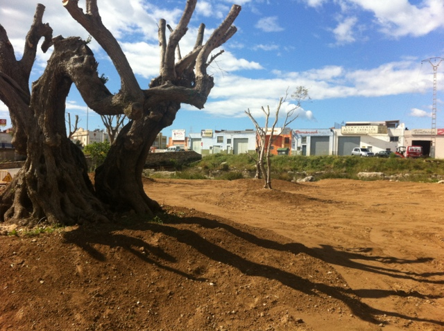 Despilfarro i inundacions
