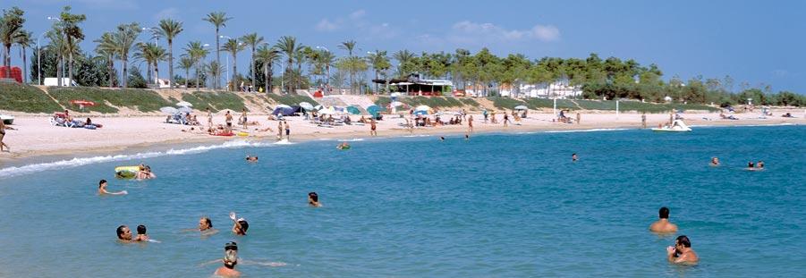 La pluja diuen que purifica i Vinaròs emmerda la platja (3)