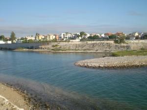 Contaminació del Riu Cérvol i de la Mediterrànea